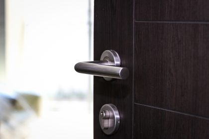 Choosing front door material: aluminium vs. stainless steel